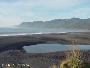 Black Sands Beach - December 28, 2000. Photo by Kim A. Cabrera.